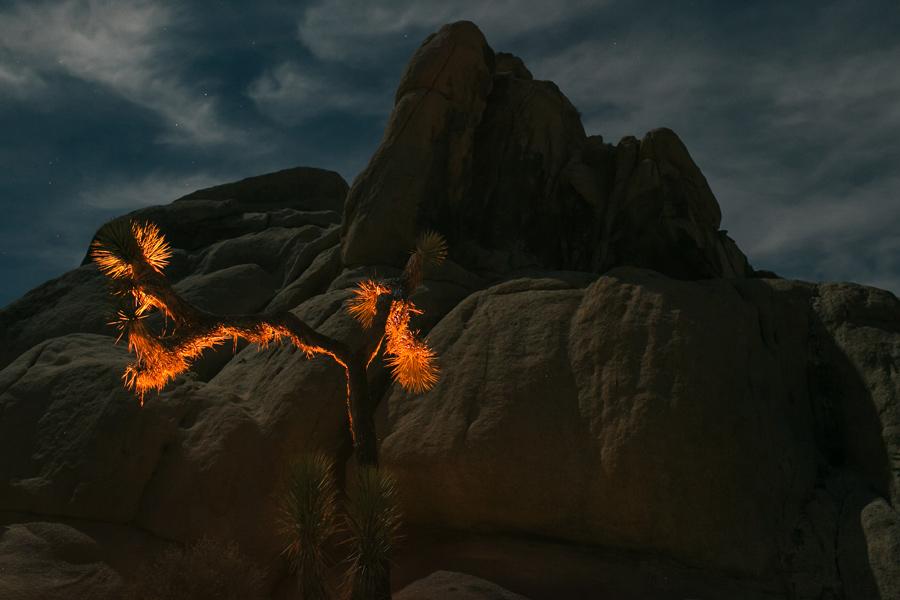 desert travel photography