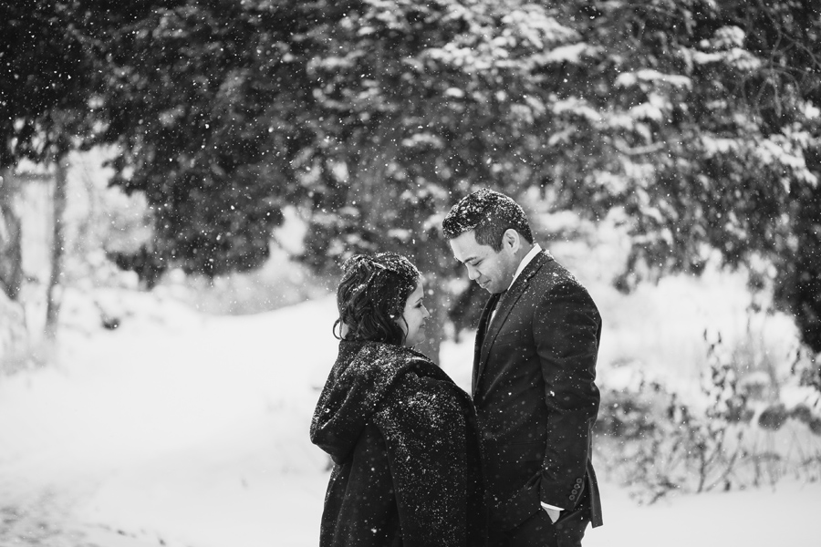 Wedding Photography Naperville