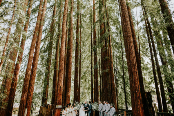 Camp Campbell | California Redwoods Wedding | Amy + Nick