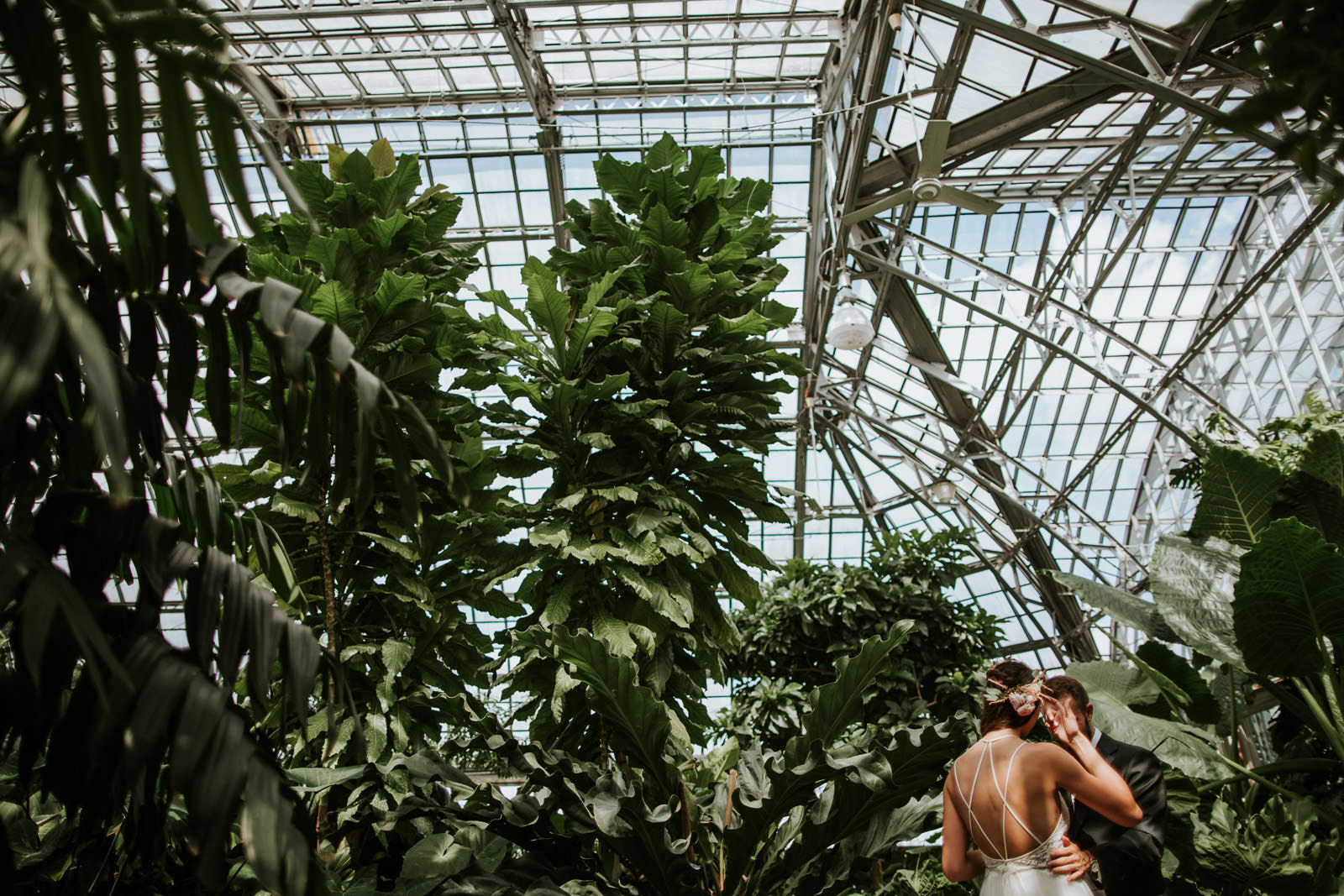 First Look Photos Garfield park Conservatory