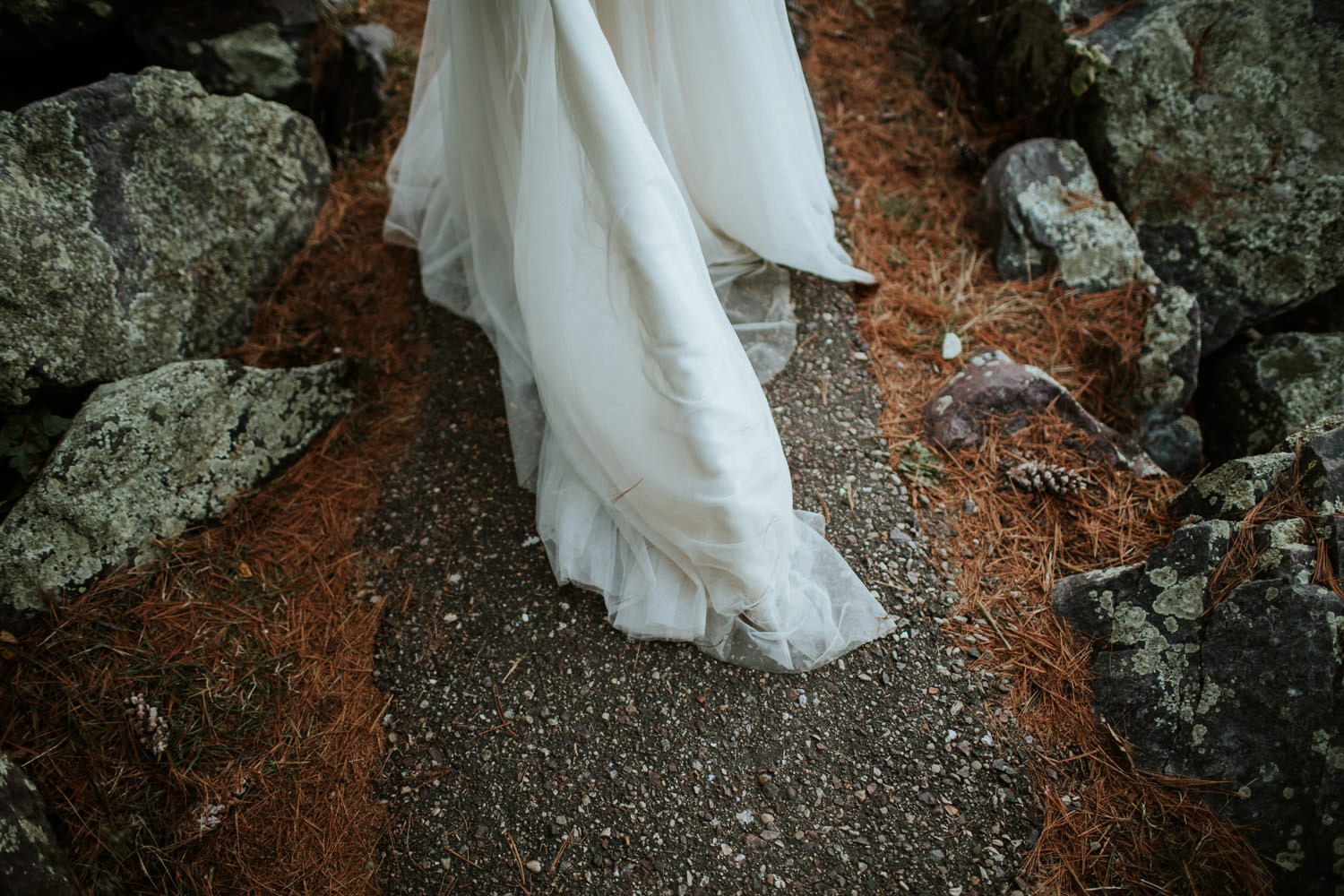 detail of the BHDL bride's dress take at devil's lake state park