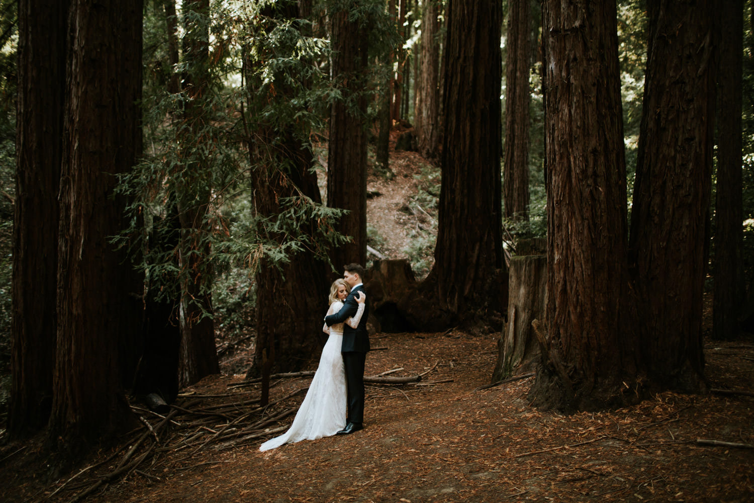 Bride and groom embrace among Redwood in California