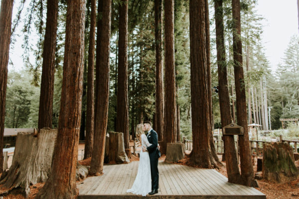 Camp Campbell Redwood Wedding in California