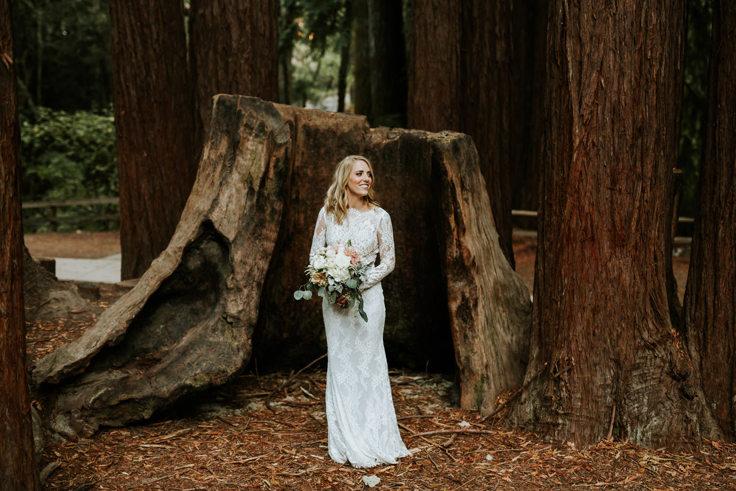 Picture of the bride wearing Calla Blanche wedding dress. Bride standing in front of Redwood in California