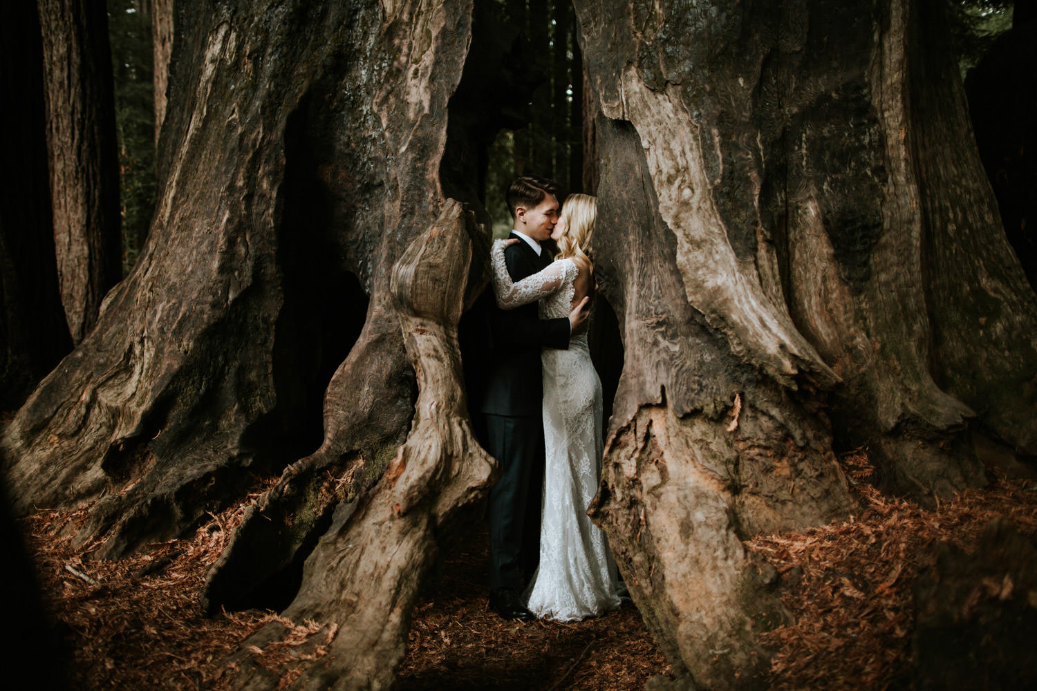 Portrait of the bride and groom taken in redwood of california at Camp Campbell in California