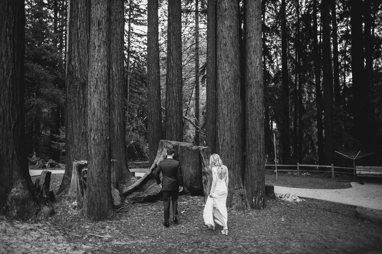 Bride and groom walk toward redwood in California during their wedding day