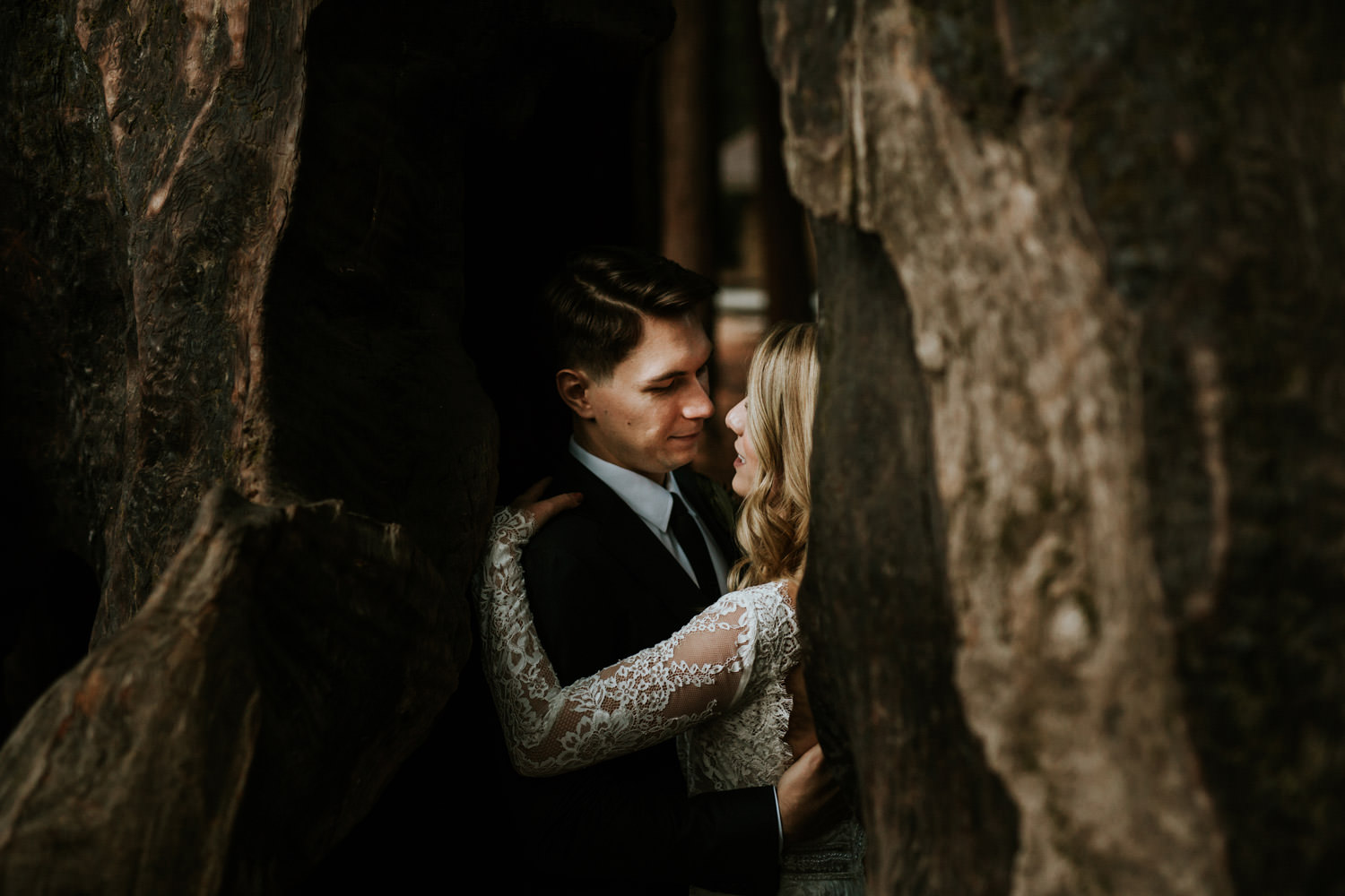 Bride and groom embrace Redwoods